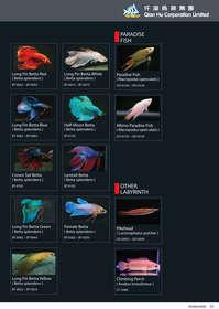 qian hu catalog inside-33s.jpg