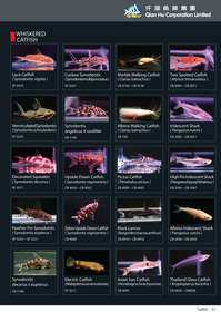 qian hu catalog inside-51.jpg
