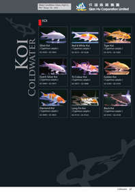 qian hu catalog inside-67.jpg