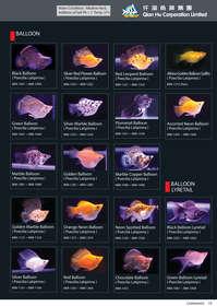 qian hu catalog inside-19.jpg