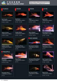 qian hu catalog inside-14.jpg